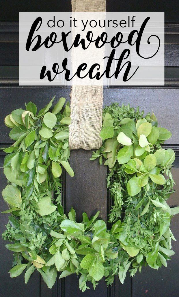 Make your own fresh boxwood wreath on the cheap! Create it whatever size or shape you'd like with this easy idea.