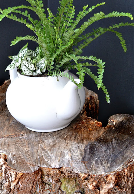 Log Slice Plant Table Easy Diy You Can Do In Minutes