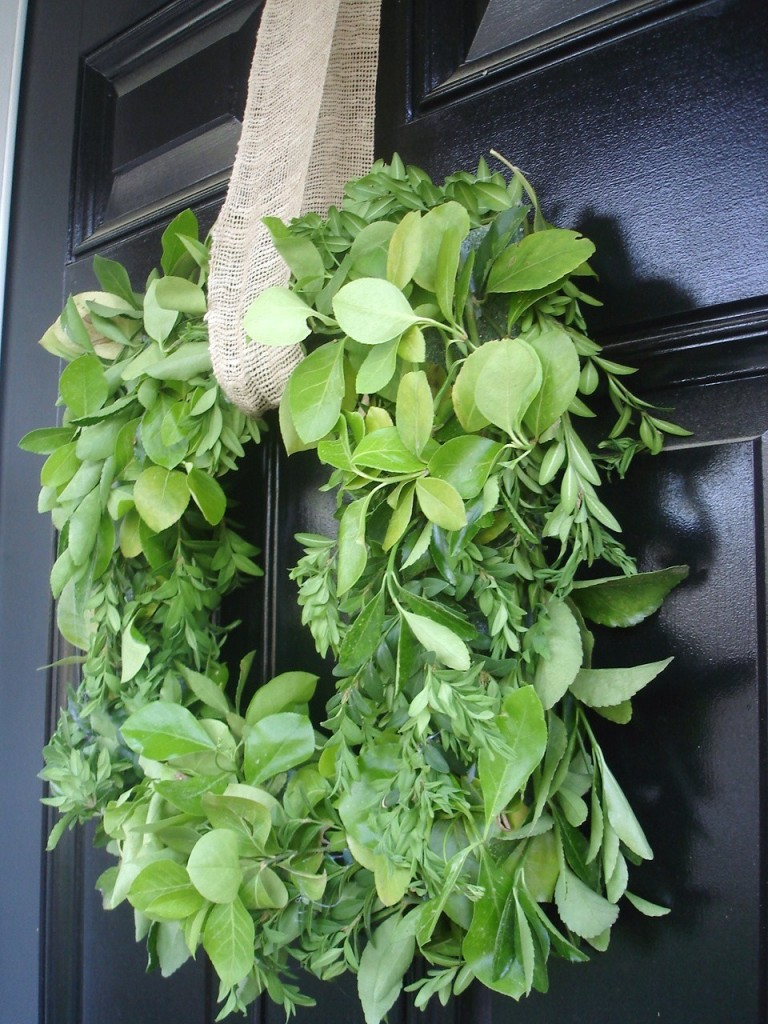 Diy Boxwood Wreath The Shabby Creek Cottage