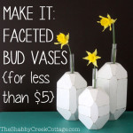 how to make test tube flower vases