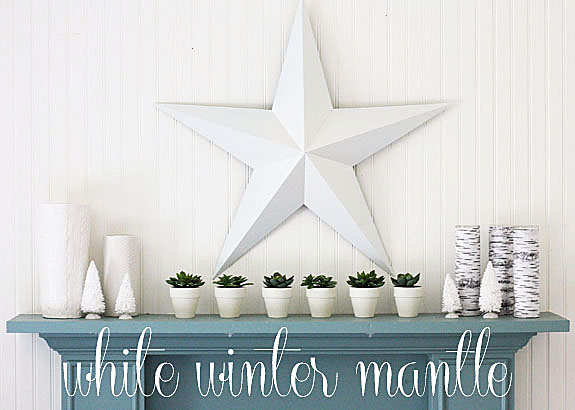 white winter mantle