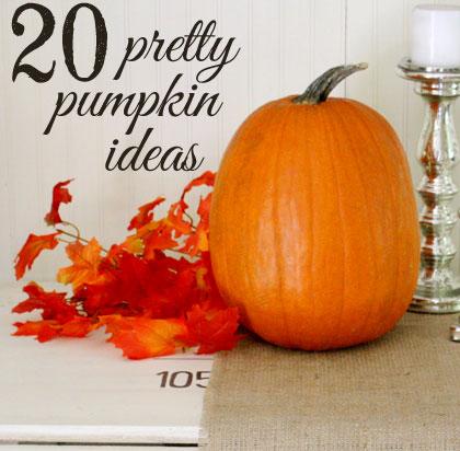 20 Pretty Pumpkin Ideas
