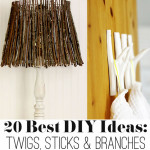 DIY ideas with Twigs