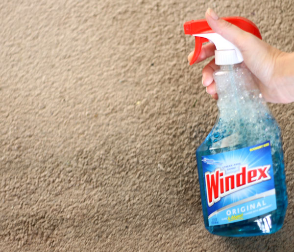 How To Remove Carpet Stains (with Something You Already Have