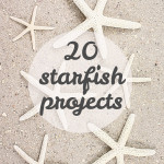 starfish projects