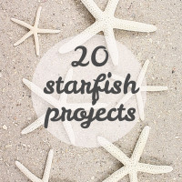 20 summery starfish projects