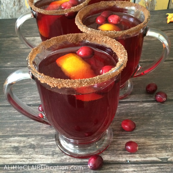 Cranberry Juice Slow Juicer : Cranberry Spice Mulled Punch