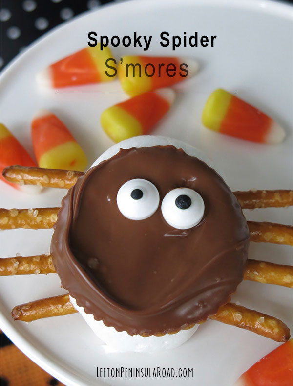 Spooky Spider S'mores for Halloween