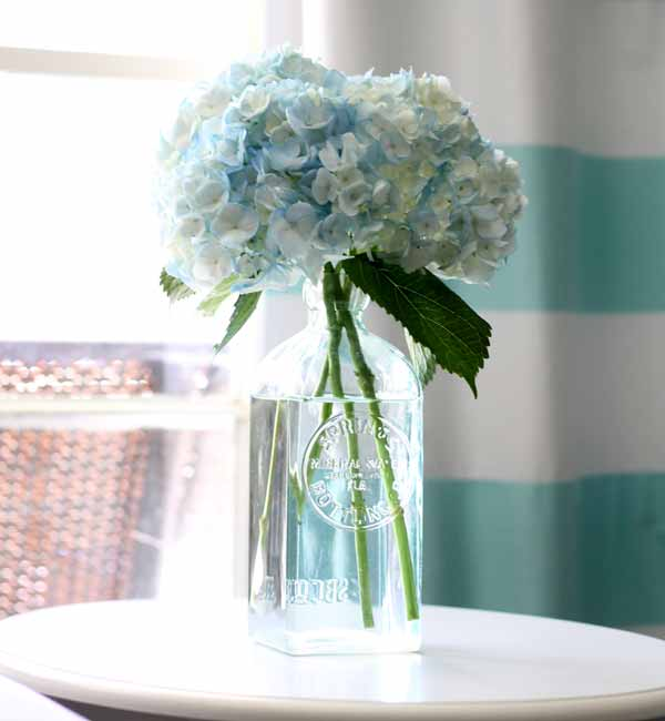 Five great tips for freshening up a room that are so easy you can do them in just a few minutes!