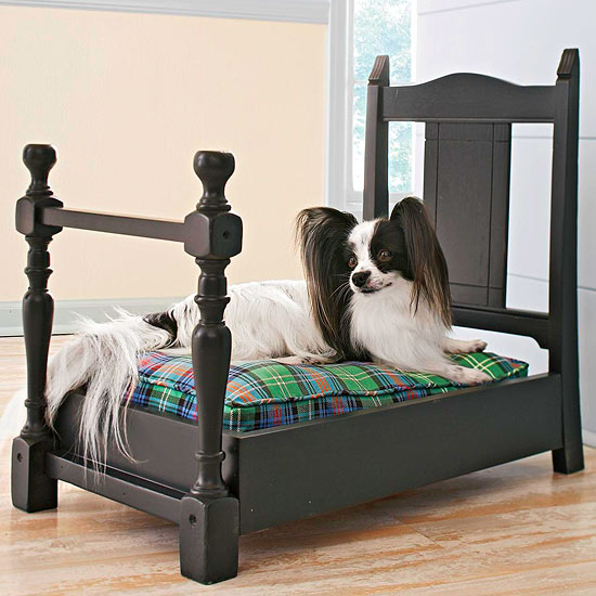 isn't this the cutest? a dog bed made from an old chair!
