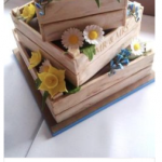 What a gorgeous cake!