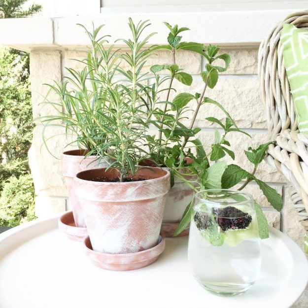 Make new terra cotta pots look old with this fun technique