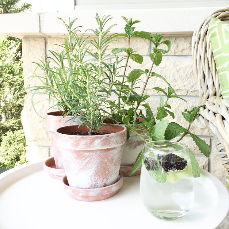 Things to do with terra cotta pots