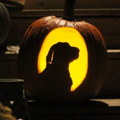 How to make a custom pumpkin carving template
