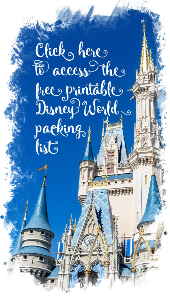 Great tips to Save Money at Disney World