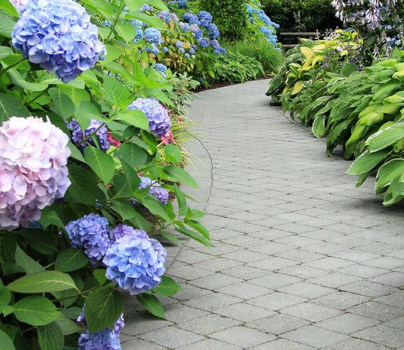 Plan your perfect garden path with these 5 steps