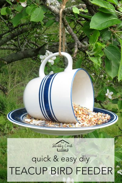 How to make a teacup bird feeder in under 5 minutes