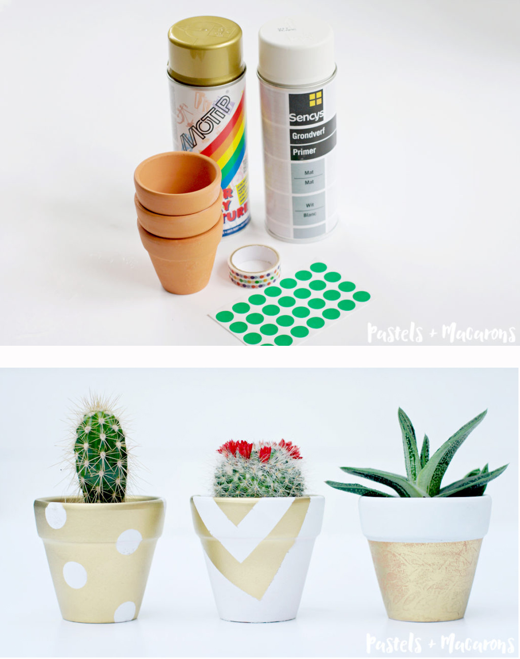Make basic terra cotta pots a little prettier with some spray paint.