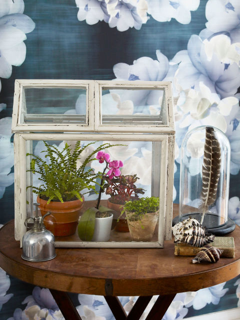 turn dollar store picture frames into chic farmhouse decor with this cute terrarium