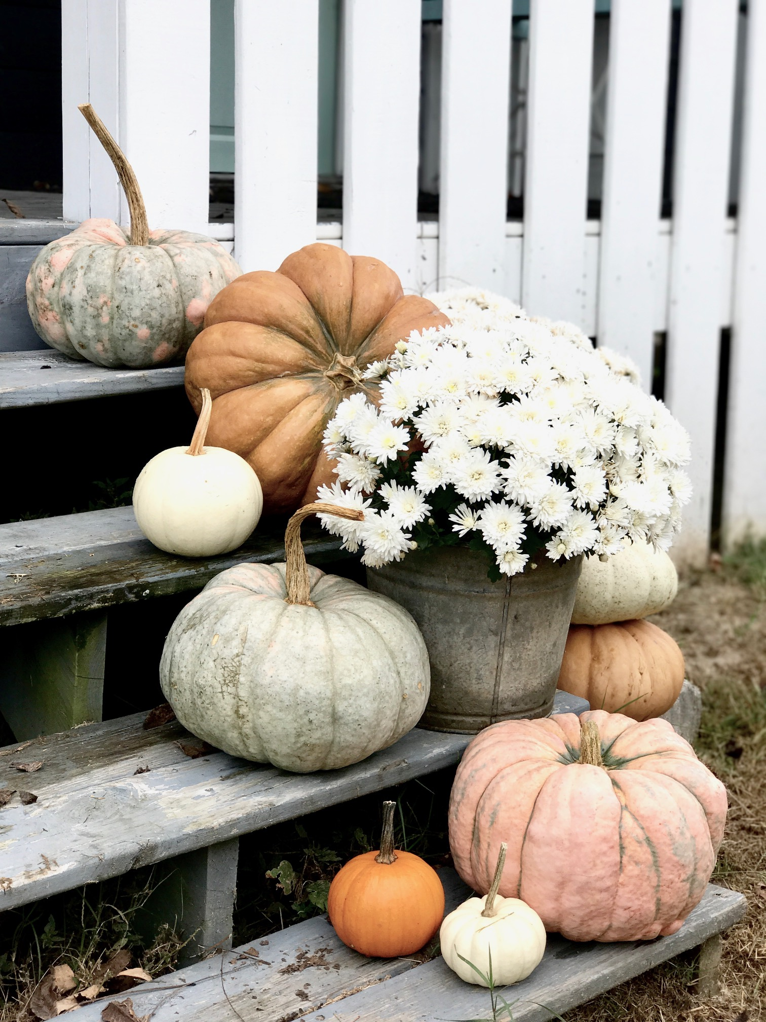 Pumpkins on the Front Porch Steps