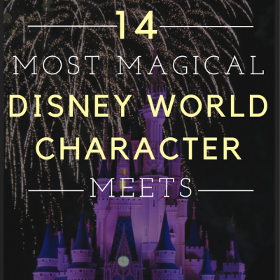 14 Most Magical Disney World Characters to Meet