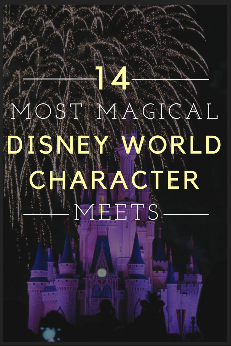 The 14 Best Disney World Characters to meet for a Magical Vacation