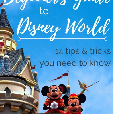 A Beginner's Guide to Disney World (14 tips and tricks you need to know!)