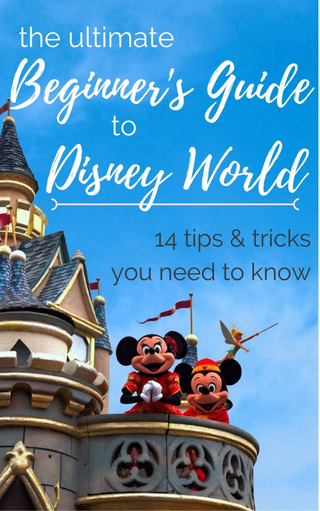 So many great tips for your first Disney World trip!