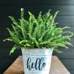 Cute galvanized tub planter using Chalk Couture - such a cute way to spiffy it up in just a couple of minutes (literally!)