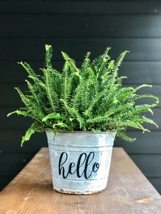 Cute metal bucket planter using Chalk Couture - such a cute way to spiffy it up in just a couple of minutes (literally!)