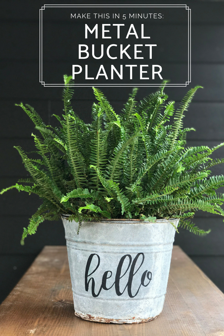 Make this easy metal bucket planter in minutes - that cute hello print took about 3 minutes to do. SO PRETTY!